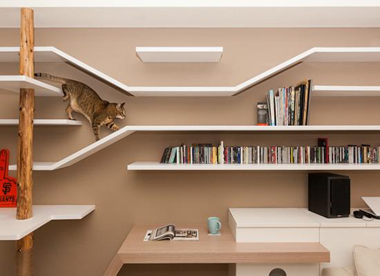 猫の本棚   木村 衣有子  本   通販   Amazon