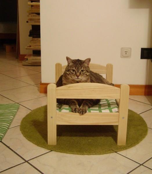 Ikea - Casas para gatos baratas ...